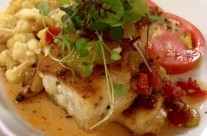 Local grouper with warm pancetta and butterbean vinaigrette